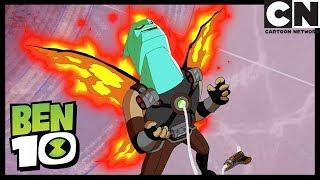 Ben 10   Alien Transformation Gone WRONG   Animorphosis   Cartoon Network