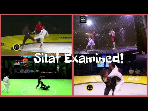 Let&39;s Look At Silat In Competition - Pencak Silat Indonesian Martial Arts