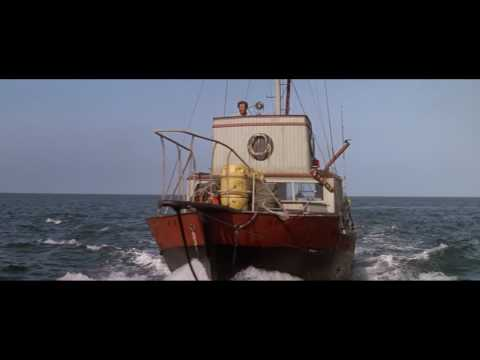 A The Shark Research Institute Film: Jaws 1975 scene  He's Gone Under the Boat