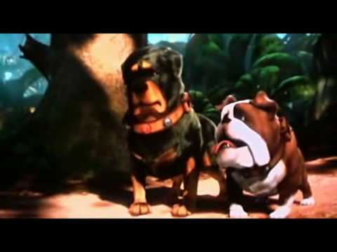 i hate squirrels up by pixar2009 youtube