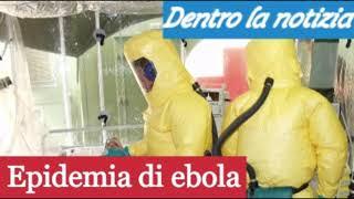 01.01.19 TG FLASH Svezia, pericolo epidemia ebola. In Italia? Governo Aiutiamo migranti a casa loro