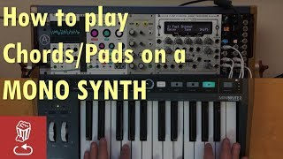 Quick synth tip: How to play pads/chords with a MONO synth (MiniBrute 2, Z-DSP, Clouds, Disting)