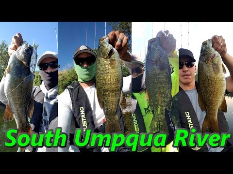 Best Of 2017 Smallies / South Umpqua River