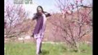 Download nazia iqbal - نازیه اقبال callona rakave -  rani dancing MP3 song and Music Video