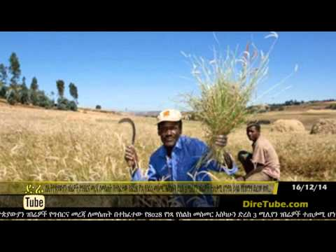 DireTube News Ethiopia's Agriculture ministry rolls out specialized phone service for farmers