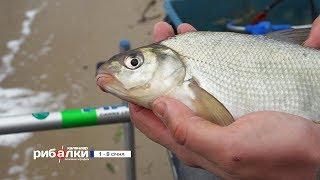 Календарь рыболова с 1 по 8 января 2018 года от телеканала 'Трофей'