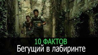 """10 фактов о фильме """"Бегущий в лабиринте"""""""
