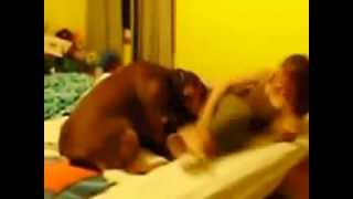 Собака трахает девушку зоофилка