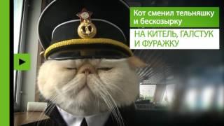 В мире людей: кот Матрос несёт вахту на российском теплоходе