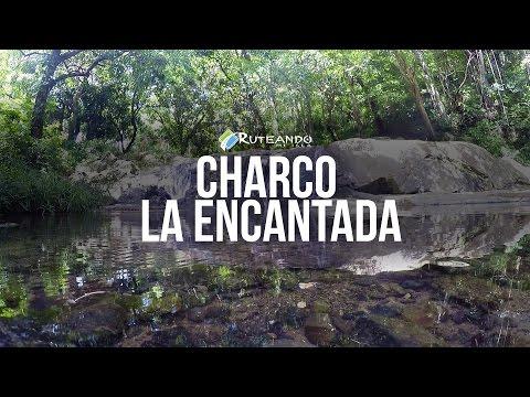 Ruteando Mi Isla: Charco La Encantada, Añasco, PR
