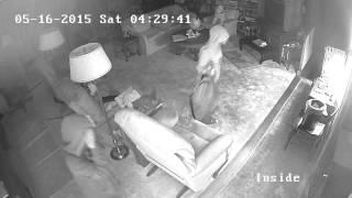 riverview blvd burglary 5 16 15