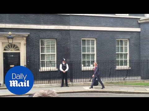 Newly appointed British Home Secretary Amber Rudd enters No.10 - Daily Mail