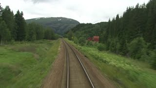 Train Journey to the Norwegian Arctic Circle, SUMMER