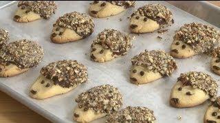 Cookie Recipes - How To Make Hedgehog Cookies
