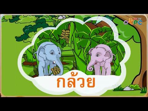 โรงเรียนลูกช้าง (รู้เรื่องคำนำ) - สื่อการเรียนการสอน ภาษาไทย ป.1