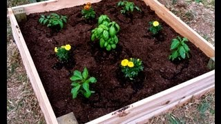 Raised Garden Planter Box - How To