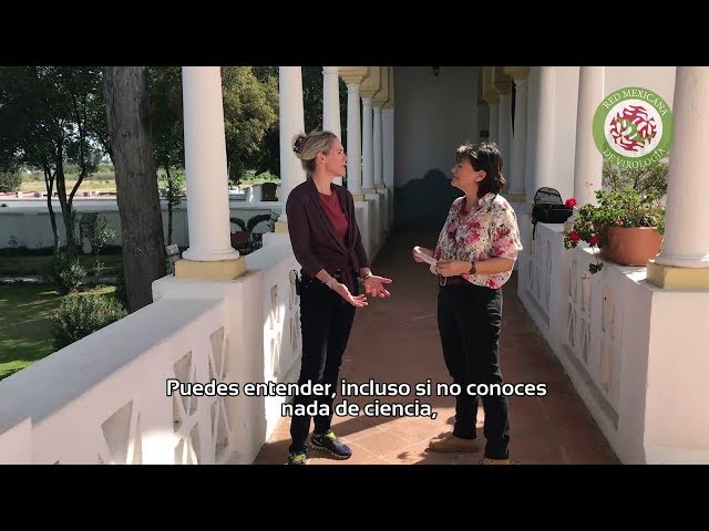 Entrevista con Britt Glaunsinger (subtítulos en español)