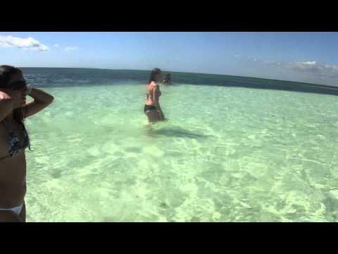 Encontro do Mar do caribe com Oceano atlantico - banco de areia