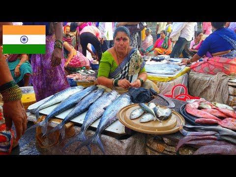 Sassoon Dock | India का सब से पुराना फिश मार्केट | Mumbai Biggest Fish Market
