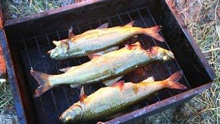 Рыба горячего копчения. Походный  рецепт.(Посмотрите простой рецепт горячего копчения рыбы в домашних или походных условиях http://www.sdelaysam-svoimirukami.ru/1834-p..., 2015-04-24T14:44:22.000Z)