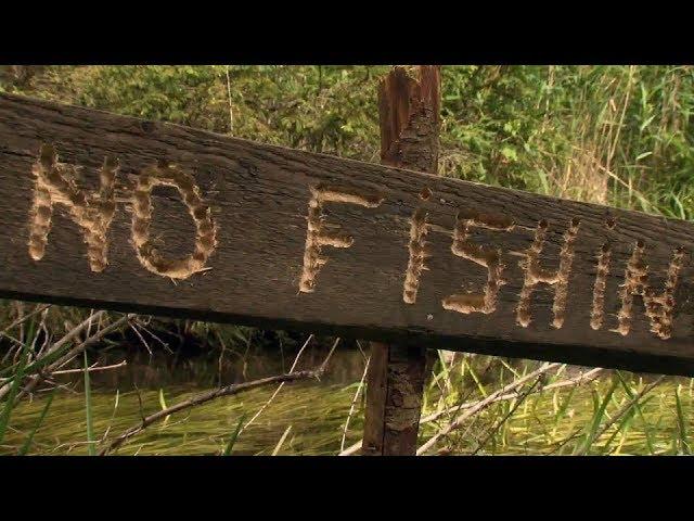 When Fisherman Don't Fish - Pastor Chris Sowards - 9-1-19 AM