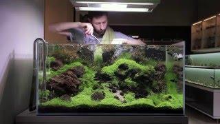 Dry River - Pielęgnacja akwarium naturalnego