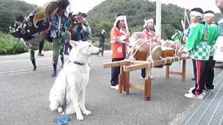 H25年10月26日 徳島のノイマンドッグスクールで 獅子舞を見まし...