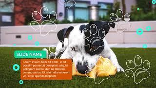 Шаблон для рекламы товаров для животных| Upsaleslab