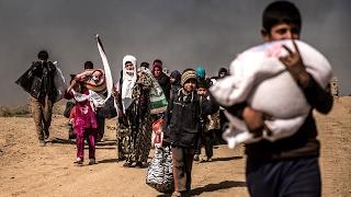 أخبار عربية - عدد نازحي غرب #الموصل يتخطى 173 ألف شخص