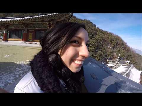 South Korea Adventures