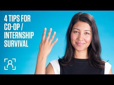 4 tips for co-op / internship survival