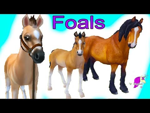 Training Foals ! Star Stable Horses App Online Horse Let's Play Game