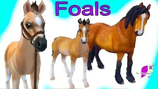 Training Foals ! Star Stable Horses App Online Horse Let