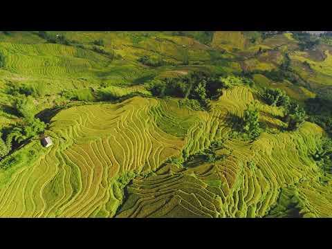 Vietnam   The Northwest Highlands