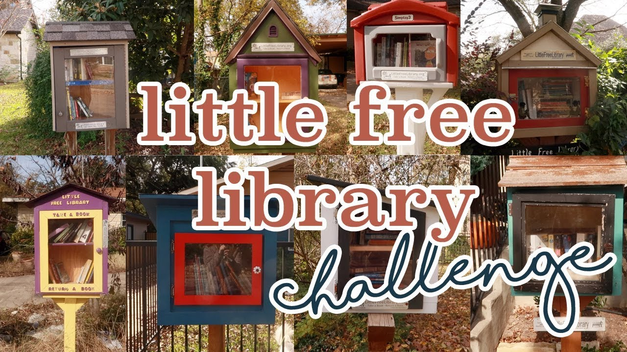 LITTLE FREE LIBRARY CHALLENGE // book haul, book unhaul, book insanity