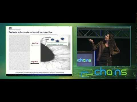 CHAINS2011 - Keynote lecture Viola Vogel
