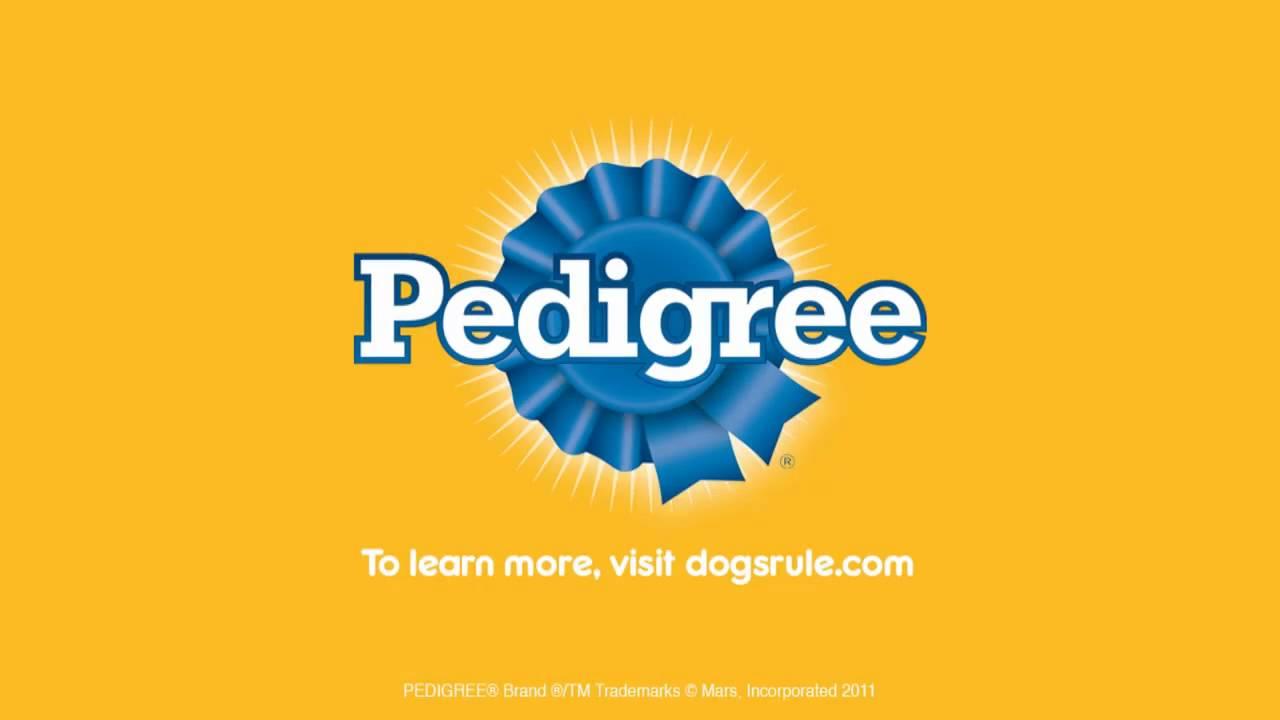 PEDIGREE® Nutrition Video: Puppy