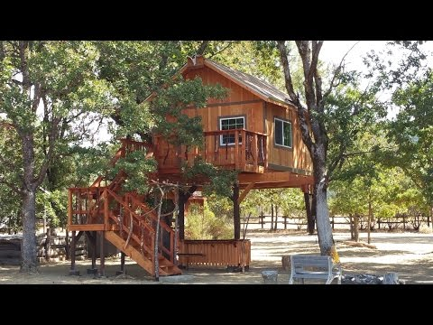 Treehouse building company in california: | Treehouse designs and ideas | treehouse builders