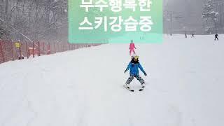 알키즈업스포츠 무주어린이스키강습 예약중
