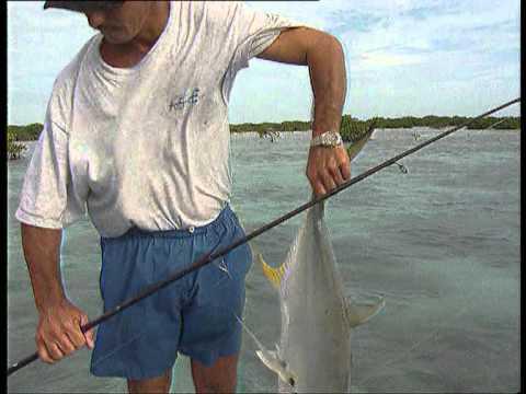 Jara y Sedal | De pesca en Cuba |