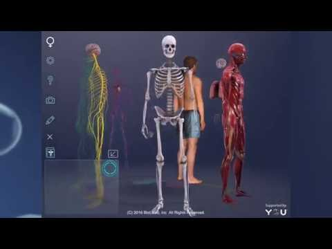 Sarasota Startup Turns Human Body Into Virtual Playground