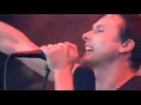 suede-suede-she's in fashion(live)