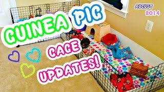 Guinea Pig Cage UPDATES! August 2014 Thumbnail