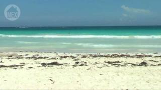Tulum Beach - Mezzanine Beach - Tulum's Hidden Paradise. 25 Top Beaches in Riviera Maya