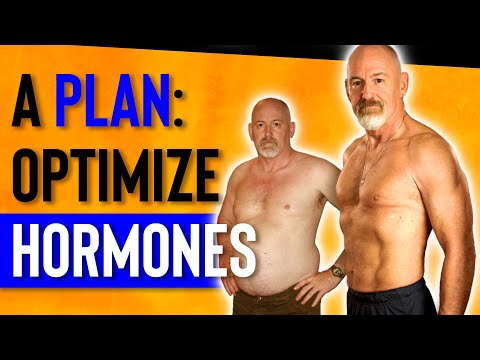 How To Build An Exercise & Nutrition Plan For Muscle Gain & Fat Loss | Testosterone And Aging