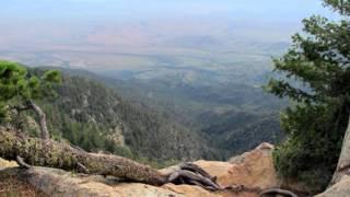 Pinaleno Mts