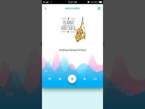 aplikacija raya