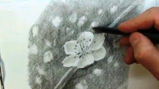КАК научиться РИСОВАТЬ. Весенние ЦВЕТЫ карандашом.(Полный курс