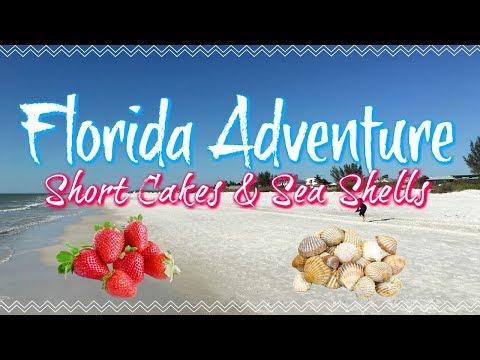 Florida Adventure: Parkesdale Market & Shelling On Anna Maria Island! ||  January 15, 2018