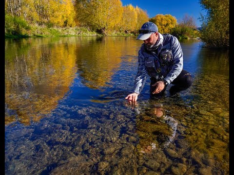 Fly Fishing New Zealand. GUIDES TRIP - Getting High On Dry.